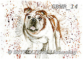Simon, REALISTIC ANIMALS, REALISTISCHE TIERE, ANIMALES REALISTICOS, paintings+++++KatherineW_SplatterBulldog,GBWR14,#a#, EVERYDAY