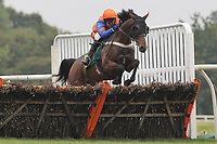 Wayward Glance ridden by Tom Scudamore in jumping action in the Hughes Electrical Fakenham Handicap Hurdle