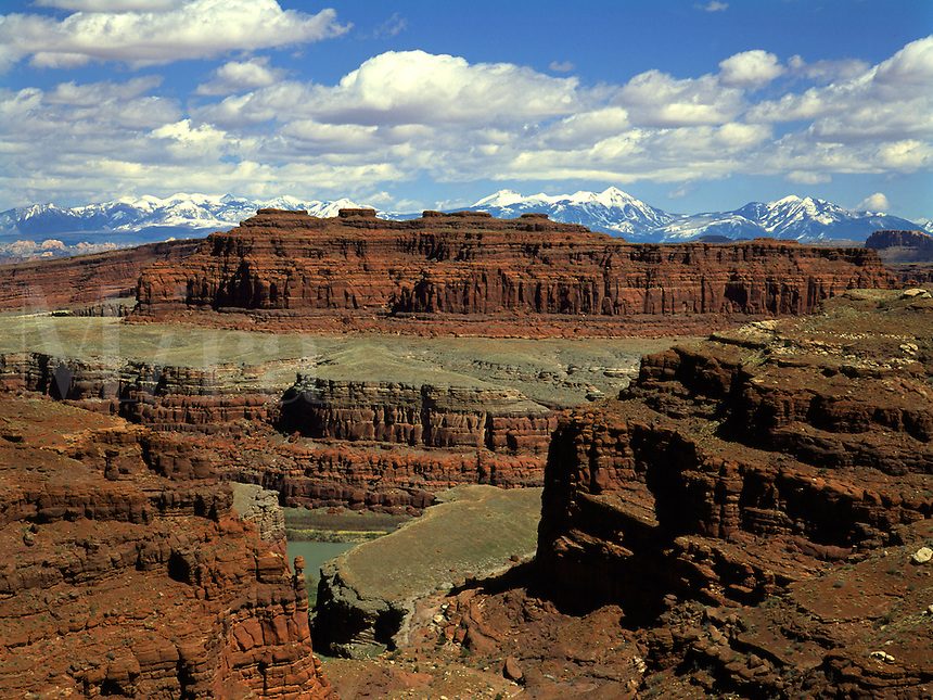 Art in Nature 9404-0117 - Aerial view of Musselman Canyon and Colorado River along the White Rim Trail in the La Salle Mountains. Island in the Sky District, Canyonlands National Park, Utah.