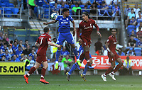 Liverpool's Virgil van Dijk heads towards goal <br /> <br /> Photographer Ian Cook/CameraSport<br /> <br /> The Premier League - Cardiff City v Liverpool - Sunday 21st April 2019 - Cardiff City Stadium - Cardiff<br /> <br /> World Copyright © 2019 CameraSport. All rights reserved. 43 Linden Ave. Countesthorpe. Leicester. England. LE8 5PG - Tel: +44 (0) 116 277 4147 - admin@camerasport.com - www.camerasport.com