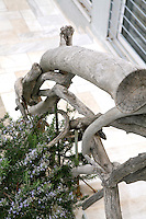 close up of log railings