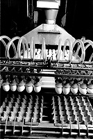 UNDATED  FILE PHOTO - Eggs factory in the seventies<br /> Photo : Alain Renaud<br />  - Agence Quebec Presse
