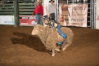 SEBRA - Gordonsville, VA - 6.13.2015 - Mutton Busting