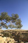 The Greek Orthodox Mar Saba monastery overlooking the Nahal Kidron