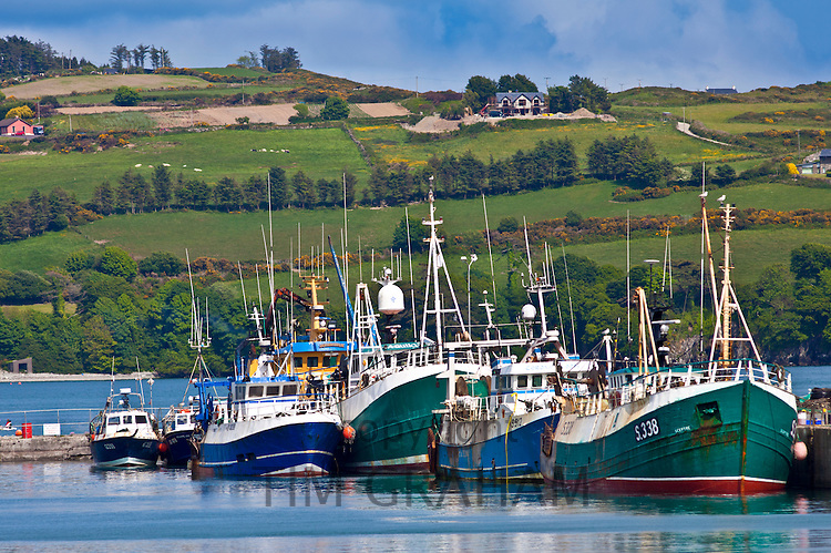 Fishing boats in harbour at Union Hall, County Cork, Ireland
