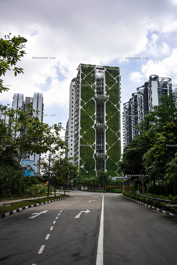 The Tree House serviced apartments had set a Guinness World Record with the world's largest vertical garden. The building's green wall measures 24 storeys tall and is expected to save more than $500,000 in energy and water costs annually. A natural insulation, it's primary function is to serve as a vertical green lung and it also has a rainwater harvesting system. Three sky gardens add to the vertical greening at the 7th, 13th and 19th floors. Photo by Suzanne Lee/Panos Pictures