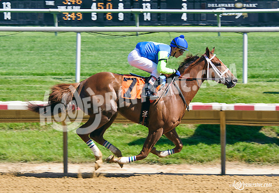 Bluegrass Beat winning at Delaware Park on 5/23/15