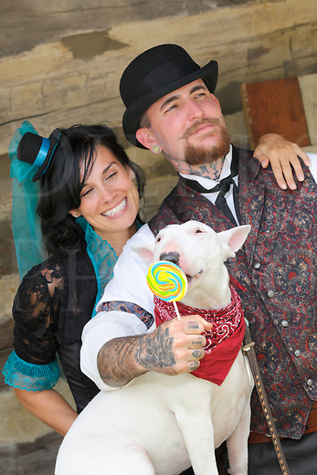 Happy Victorian man and woman having fun with their bull terrier dog licking a lollipop.
