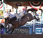 George Gillespie competes in the bareback bronc riding event at the Reno Rodeo in Reno, Nev., on Thursday, June 27, 2013.<br /> Photo by Cathleen Allison