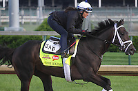 May 1, 2014: Intense Holiday gallops in preparation for the Kentucky Derby at Churchill Downs in Louisville, KY. Zoe Metz/ESW/CSM