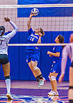 2 November 2014: Yeshiva University Maccabee Middle Blocker Marissa Almoslino, a Sophomore from Seattle, WA, in action against the Sarah Lawrence Gryphons at SUNY Purchase College, in Purchase, NY. The Maccabees defeated the Gryphons 3-2 in the NCAA Division III Women's Volleyball Skyline matchup. Almoslino ended her 2014 season with 44 Kills, 90 Digs and 24 Aces for the Lady Macs. Mandatory Credit: Ed Wolfstein Photo *** RAW (NEF) Image File Available ***
