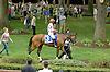 Royal Delta before The Delaware Handicap (gr 2) at Delaware Park on 7/21/12