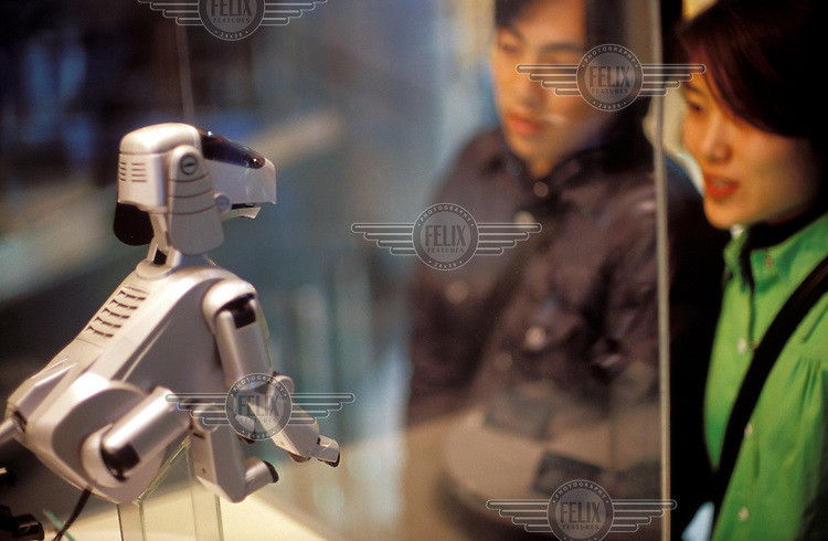 © Paul Quayle / Panos Pictures..Tokyo, Japan...A couple admire the Sony 'Aibo' robot dog, on display in the Sony Building.