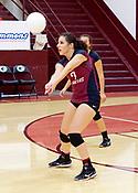Gentry Volleyball 2017