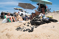 """Janice (from left), Reid (13), Tristan (13), and Scott Marble and their dog Daisy, sit near their car at Herring Cove Beach in the Cape Cod National Seashore outside of Provincetown, Mass., USA, on Fri., July 1, 2016. At right, pieces of eroded asphalt lay in the sand. Portions of the parking lot have been closed after land eroded during storms earlier this year. The Marble family spend their summers in Orleans, Mass., located on Cape Cod, and spend the rest of their year in Medfield, Mass. Scott, age 60, says he's been coming to the beach at least 40 years, and the couple have taken the boys to the beach since they were babies. """"We miss the whole length of it,"""" Janice said when asked about how the destroyed road and parking lot have changed the beach."""