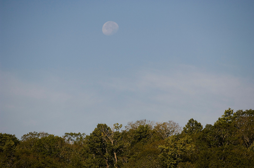 Moonrise at Sylvania Wilderness Area of Ottawa National Forest near Watersmeet Michigan.