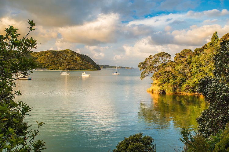 A summer evening view of moored boats at at Dicks Bay (Huruhi Bay) in the Bay of Islands. <br /> <br /> Northland, New Zealand - stock photo, canvas, fine art print