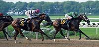 Horse racing; racehorse; Thoroughbred; racetrack, Gulch, Mr. Prospector, Afleet, Belmont Park, Metropolitan Handicap