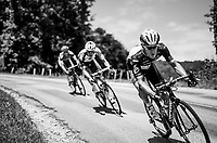 Serge Pauwels (BEL/Dimension Data) leading the way<br /> <br /> Stage 6: Le parc des oiseaux/Villars-Les-Dombes &rsaquo; La Motte-Servolex (147km)<br /> 69th Crit&eacute;rium du Dauphin&eacute; 2017