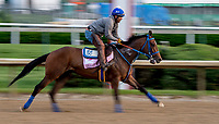 LOUISVILLE, KY - MAY 02: Classy Act works out on the track in preparation for the Kentucky Oaks at Churchill Downs on May 2, 2018 in Louisville, Kentucky. (Photo by Sydney Serio/Eclipse Sportswire/Getty Images)