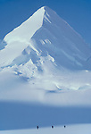Alaska, mountain climbing, Chugach Range. Matanuska Glacier, Three roped climbers from the National Outdoor Leadership School approach a lone, white mountain, snow covered, classically horn shaped that has become known as Catalog Peak