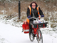 Hertfordshire - Snow scenes in Hertfordshire. Pictured - Post lady struggles on bicicyle in snow, near Ickleford - January 18th 2012..Photo by Keith Mayhew