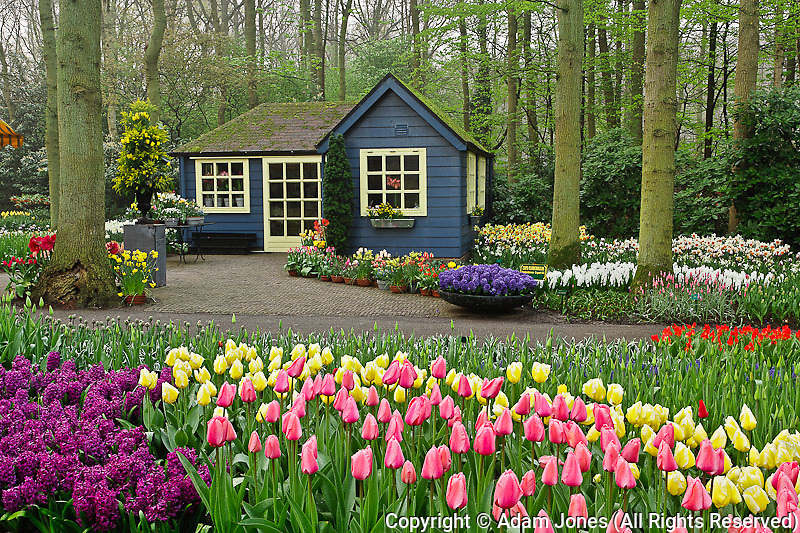 Small cottage flower shop, Keukenhof Gardens, Lisse, Netherlands