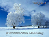 Marek, CHRISTMAS LANDSCAPES, WEIHNACHTEN WINTERLANDSCHAFTEN, NAVIDAD PAISAJES DE INVIERNO, photos+++++,PLMP0449Z,#xl#
