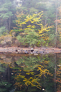 Pawtuckaway State Park - Fundy Trail in Nottingham, New Hampshire, USA during the autumn months.
