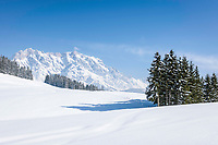 Oesterreich, Salzburger Land, Pinzgau, Maria Alm: Winterlandschaft auf der Jufenalm vorm Hochkoenig | Austria, Salzburger Land, Pinzgau, Maria Alm: winter scenery at Jufenalm, at background Hochkoenig mountains