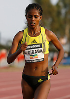 Ejegayehu Dibaba finished 2nd. in the 5000m run with a time of 15:07.45 at the Adidas Track Classic 2009 on Saturday May 16, 2009. Photo by Errol Anderson, The Sporting Image.com