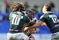 London Irish v Bath : 22.09.12