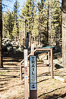 The Pacific Crest Trail in Sequoia National Forest. Kern County, Calif.