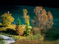 Austria, Tyrol, near Scheffau am Wilden Kaiser: autumn walk along lake Hintersteiner See   Oesterreich, Tirol, bei Scheffau am Wilden Kaiser: Herbstspaziergang am Hintersteiner See