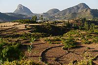 ETHIOPIA, Tigray, highland , Adua, Battle of Adwa was fought on 1 March 1896 between the Ethiopian Empire and Italy, the batttle was lost by the italian army, fields and rocks / AETHIOPIEN, Tigray, Hochland, Adwa, Adwa wurde durch die Schlacht von Adua 1896 bekannt, in der aethiopische Truppen unter Kaiser Menelik II. eine italienische Armee unter Oreste Baratieri in die Flucht schlugen. Durch diesen Sieg wurde der Versuch Italiens verhindert, Aethiopien als Kolonie zu beherrschen