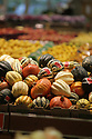 Decorative squash and gourds arranged for display in the produce department