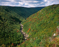 The Blackwater River; Blackwater Falls State Park, WV