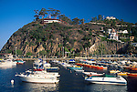 Homes on hillside over pleasure boats anchored in Avalon Harbor, Catalina Island coast, California