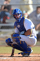 South Dakota State JackRabbits catcher Reid Clary (14) during a game against the Georgetown Hoyas at South County Regional Park on March 9, 2014 in Port Charlotte, Florida.  Georgetown defeated South Dakota 7-4.  (Mike Janes/Four Seam Images)