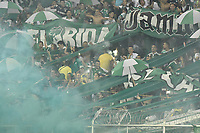 PALMIRA - COLOMBIA, 20-11-2019: Hinchas del Cali animan a su equipo durante partido entre Deportivo Cali y América de Cali por la fecha 4, cuadrangulares semifinales, de la Liga Águila II 2019 jugado en el estadio Deportivo Cali de la ciudad de Palmira. / Fans of Cali cheer for their team during match between Deportivo Cali and America de Cali for the date 4, quadrangulars semifinals, as part of Aguila League II 2019 at Deportivo Cali stadium in Palmira city . Photo: VizzorImage / Gabriel Aponte / Staff