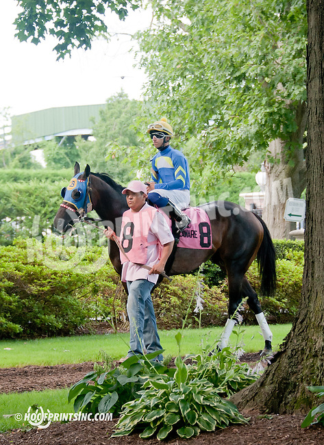Picko's Pride before The Hockessin Stakes at Delaware Park on 7/4/13