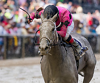 BALTIMORE, MD - MAY 19: Actress #10, ridden by Nik Juarez, wins the Black-Eyed Susan Stakes on Black-Eyed Susan Day at Pimlico Race Course on May 19, 2017 in Baltimore, Maryland.(Photo by Scott Serio/Eclipse Sportswire/Getty Images)