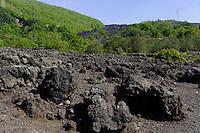 Lavazunge bei Zafferana am Etna, Sizilien, Italien , UNESCO-Weltnaturerbe