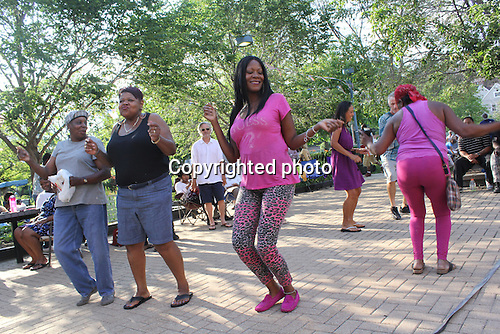 The 2014 George Franklin Summer Concert Series held its first of ten concerts this Sunday at Nichols Park located at 1355 E. 53rd Street. The headlining act was Bernard Crump with at James Brown review and a tribute to Muddy Waters.