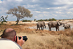 Tourist photographing at Etosha National Park waterhole, Namibia, Africa