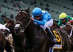 MAY 18: Bolo with Florent Geroux wins the Shoemaker Mile at Santa Anita at Santa Anita Park in Arcadia, California on May 27, 2019. Chris Crestik/Eclipse Sportswire/CSM