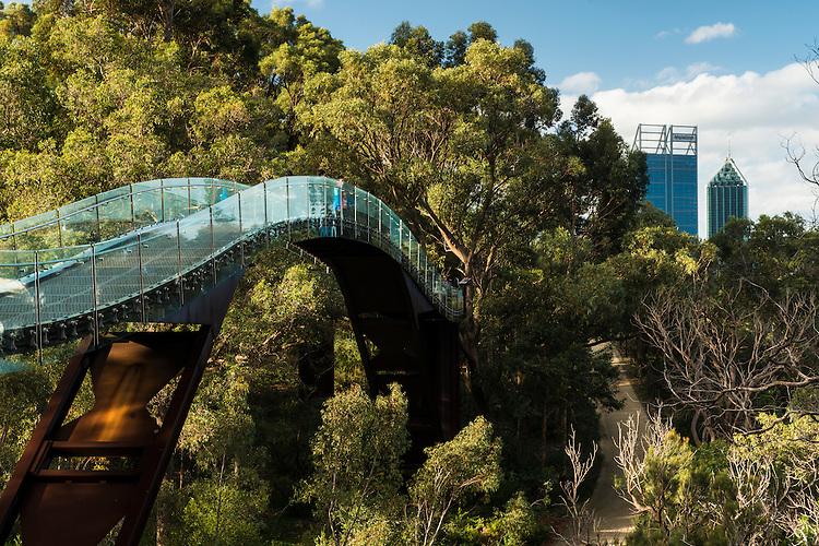 Kings Park Botanic Gardens, Perth.