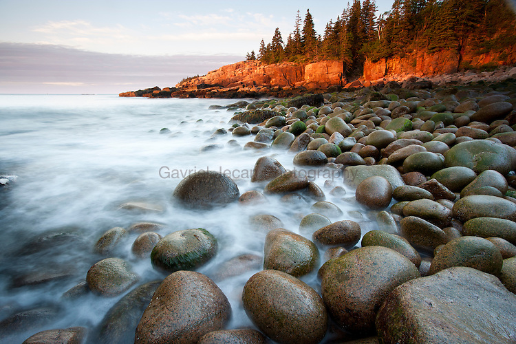 Rocks at Otter Cliffs, Acadia National Park