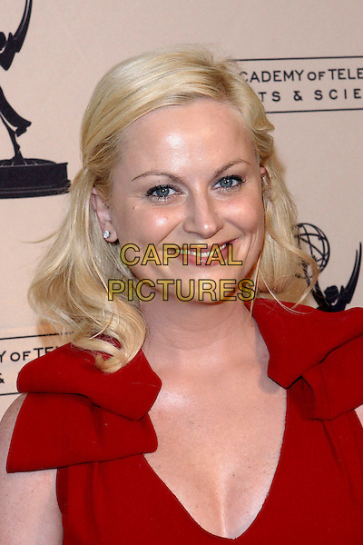 AMY POEHLER.Academy Of Television  Arts & Sciences 19th Annual Hall Fame Gala  held at The Guys & Dolls Lounge, West Hollywood, CA, USA..January 20th, 2010.headshot portrait red cleavage .CAP/ADM/TC.©T. Conrad/AdMedia/Capital Pictures.