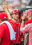 24 February 2019: Washington Nationals infielder Trea Turner returns to the dugout after scoring in a Spring Training game against the St. Louis Cardinals at Roger Dean Stadium in Jupiter, Florida. The Nationals defeated the Cardinals 12-2 in Grapefruit League play. Mandatory Credit: Ed Wolfstein Photo *** RAW (NEF) Image File Available ***